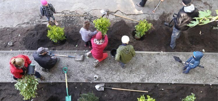 Liberare il suolo, le linee guida per la rigenerazione urbana nature-based - webinar gratuito
